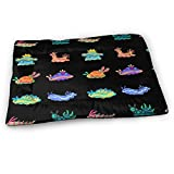 Rikana Sea Slug Medium Washable Dog Training Mat, Waterproof and Leakproof, Absorbent Dog Mat.31 x21