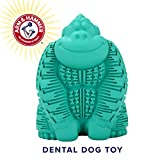 Arm & Hammer Super Treadz Gorilla Dental Chew Toy for Dogs | Best Dog Chew Toy for The Toughest Chewers