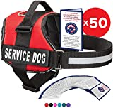 Service Dog Vest With Hook and Loop Straps and Handle - Harness is Available in 8 Sizes From XXXS to XXL - Service Dog Harness Features...