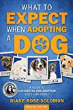 What to Expect When Adopting a Dog: A Guide to Successful Dog Adoption for Every Family