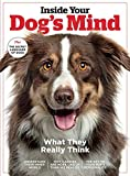 Inside Your Dog's Mind: What They Really Think