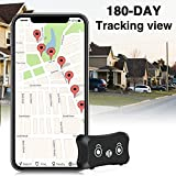 ENGERWALL 2020 New Upgraded Mini Dog GPS Tracker, Lifetime Free Multipurpose Real-time GPS Tracker with 800 mAh Battery & Pet Collar &...