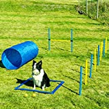 Sowsun Dog Agility Equipment, Outdoor Games Exercise Training Ostacle Couse Hurdles for Jumping Practice, Agility Starter Kit with...