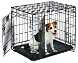 Small Dog Crate | MidWest Life Stages 24' Double Door Folding Metal Dog Crate | Divider Panel, Floor Protecting Feet, Leak-Proof Dog...