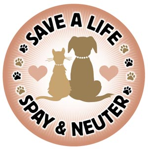 Spaying or Neutering